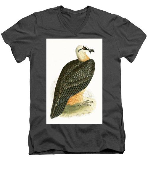Bearded Vulture Men's V-Neck T-Shirt by English School