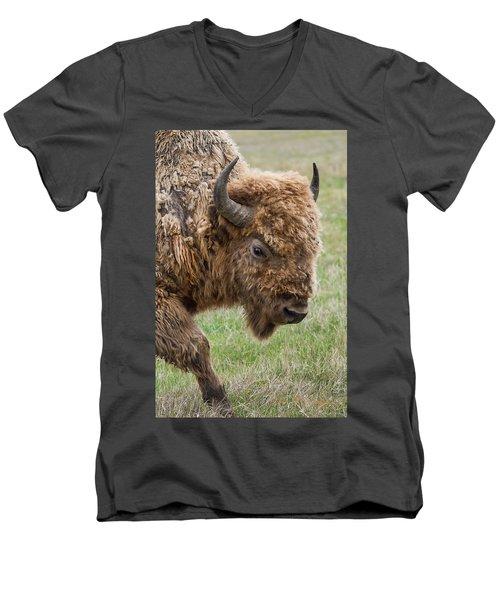 The Beast Men's V-Neck T-Shirt