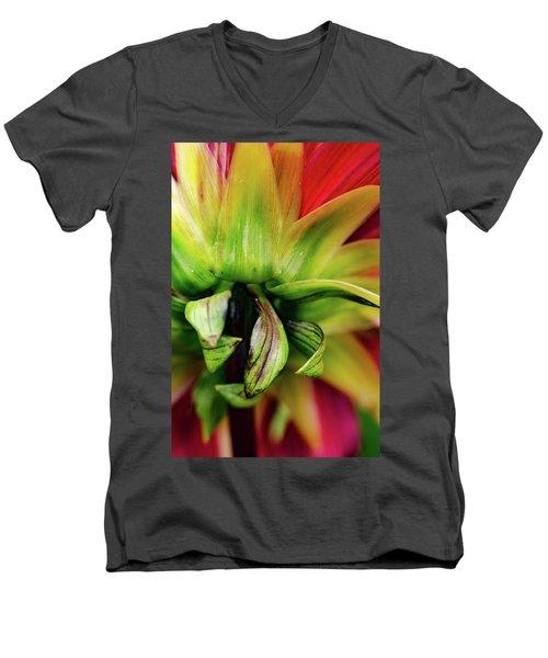 Beautiful Backside Men's V-Neck T-Shirt