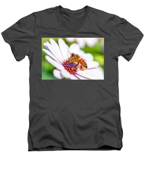 Beautiful Bee On Daisy Men's V-Neck T-Shirt