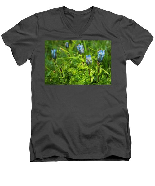 Beautiful Bouquet Men's V-Neck T-Shirt