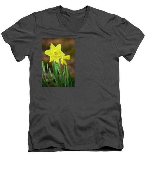 Beautiful Daffodil Flower Men's V-Neck T-Shirt