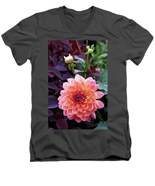 Beautiful Dahlia Men's V-Neck T-Shirt