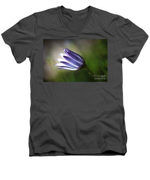 Beautiful Inner Glow Of The Daisy Men's V-Neck T-Shirt