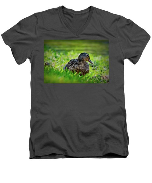 Men's V-Neck T-Shirt featuring the photograph Beautiful Mama Duck by Linda Unger