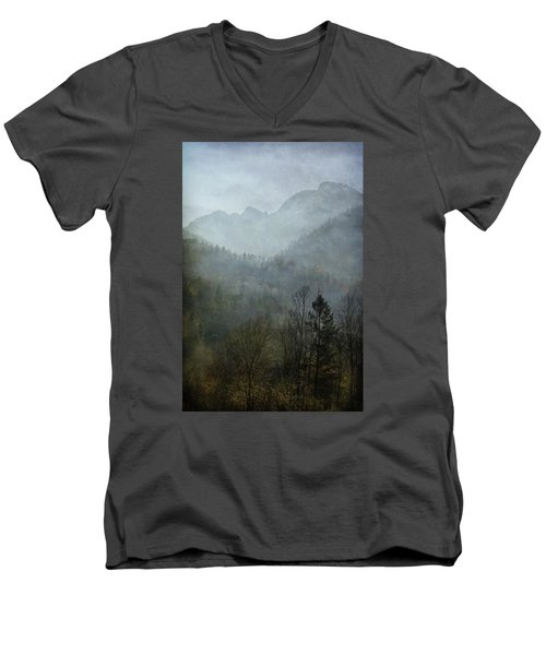 Beautiful Mist Men's V-Neck T-Shirt