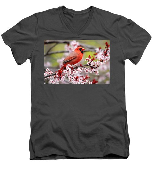 Beautiful Northern Cardinal Men's V-Neck T-Shirt by Trina Ansel