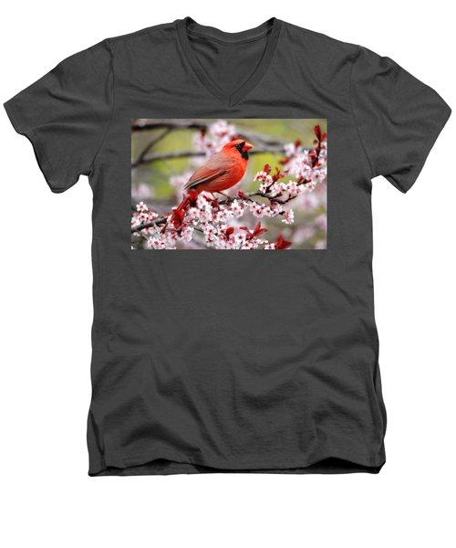Beautiful Northern Cardinal Men's V-Neck T-Shirt