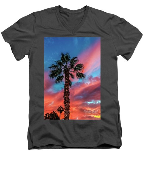 Beautiful Palm Tree Men's V-Neck T-Shirt by Robert Bales