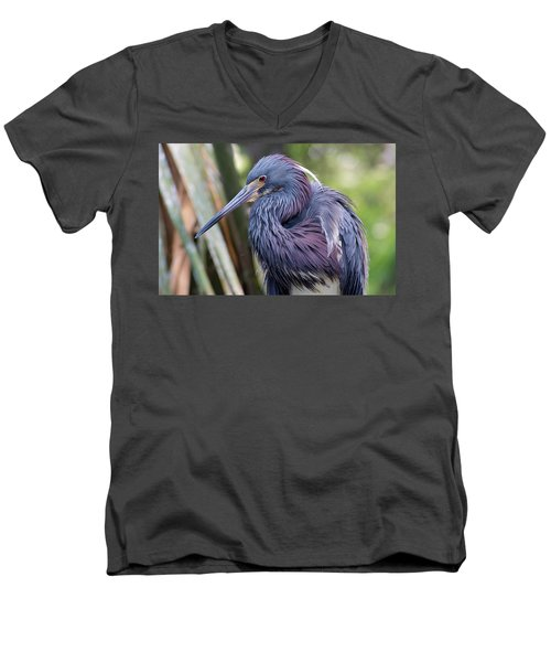 Beautiful Tricolored Heron Men's V-Neck T-Shirt