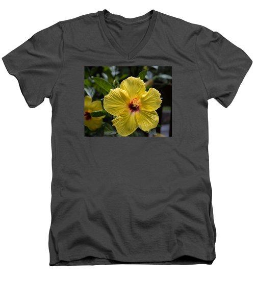 Beautifully Delicate Men's V-Neck T-Shirt