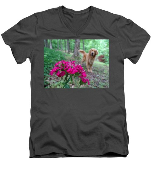 Beauty And The Beast. Men's V-Neck T-Shirt