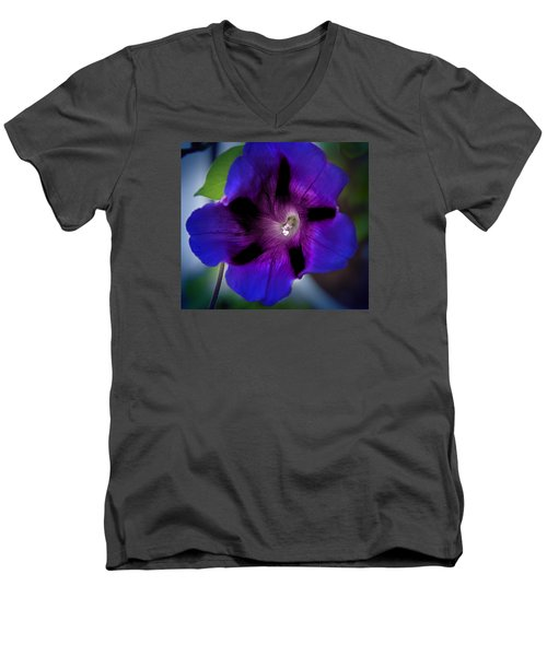 Beauty In Blue Men's V-Neck T-Shirt