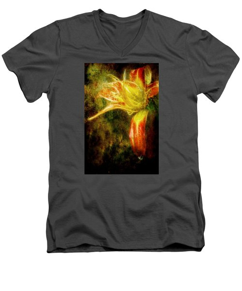 Beauty In The Darkness Men's V-Neck T-Shirt