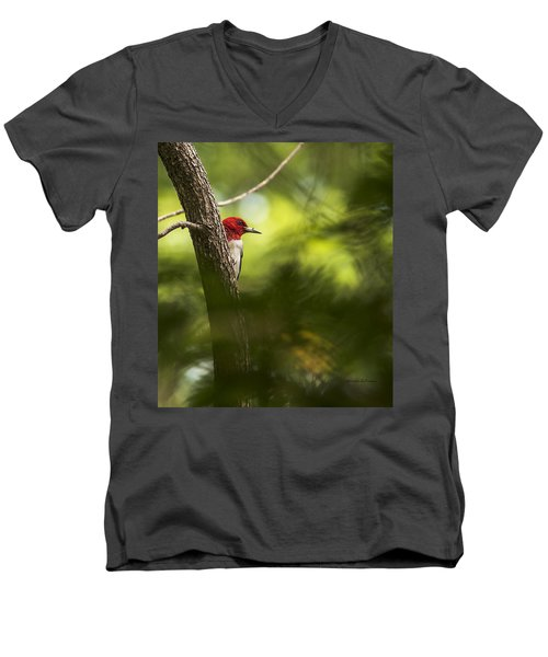 Beauty In The Woods Men's V-Neck T-Shirt