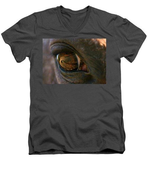 Beauty Is In The Eye Of The Beholder Men's V-Neck T-Shirt