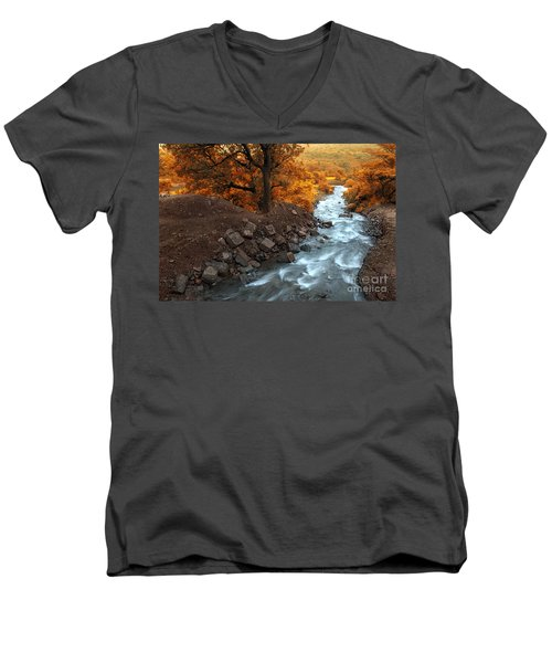 Beauty Of The Nature Men's V-Neck T-Shirt