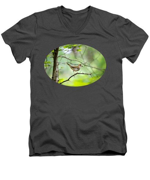 Beauty Of The Spring Forest Men's V-Neck T-Shirt