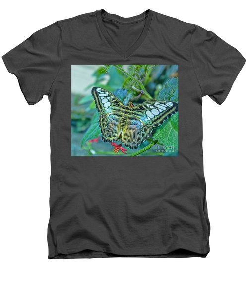 Beauty On Wings Men's V-Neck T-Shirt by Steven Parker