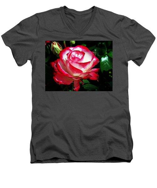 Beauty Rose Men's V-Neck T-Shirt by Joseph Frank Baraba