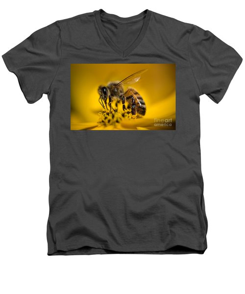 Bee Enjoys Collecting Pollen From Yellow Coreopsis Men's V-Neck T-Shirt