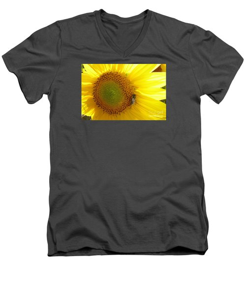 Men's V-Neck T-Shirt featuring the photograph Bee On Sunflower by Jean Bernard Roussilhe