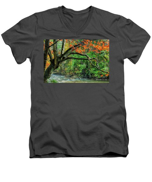 Beech Tree And Swinging Bridge Men's V-Neck T-Shirt