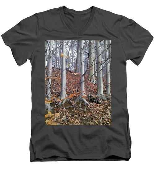 Beech Trees Men's V-Neck T-Shirt