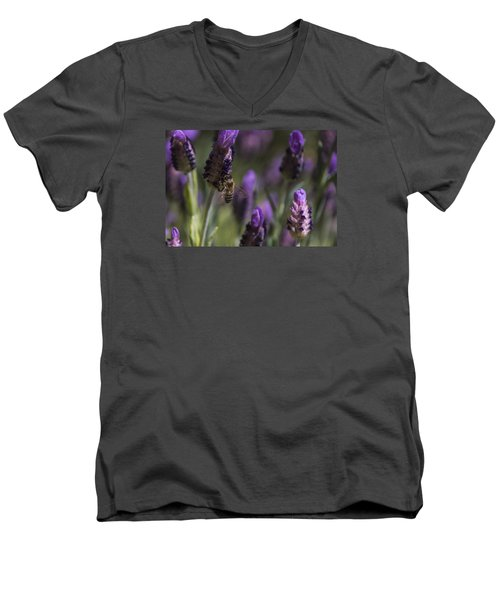 Men's V-Neck T-Shirt featuring the photograph Bee's Delight by Laura Pratt