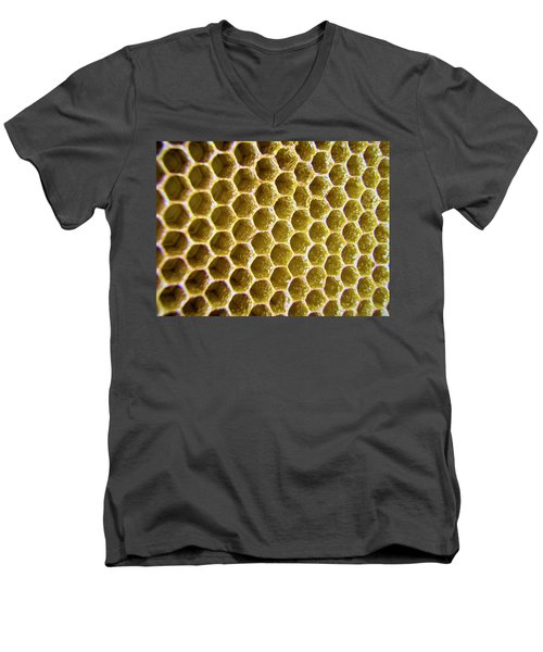 Bee's Home Men's V-Neck T-Shirt