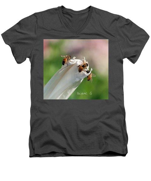 Bees On Angel Trumpet Men's V-Neck T-Shirt