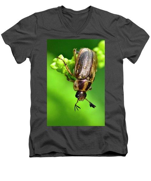 Beetle Men's V-Neck T-Shirt
