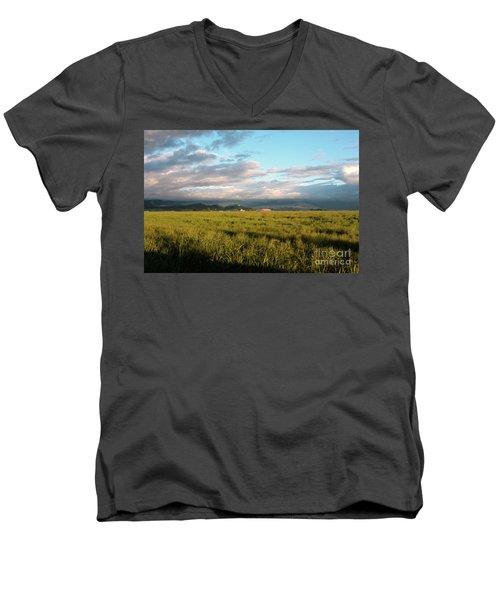 Before The Rainbow Men's V-Neck T-Shirt by Janie Johnson