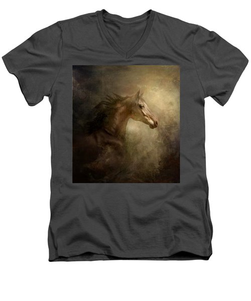 Behind Broken Mirror Men's V-Neck T-Shirt