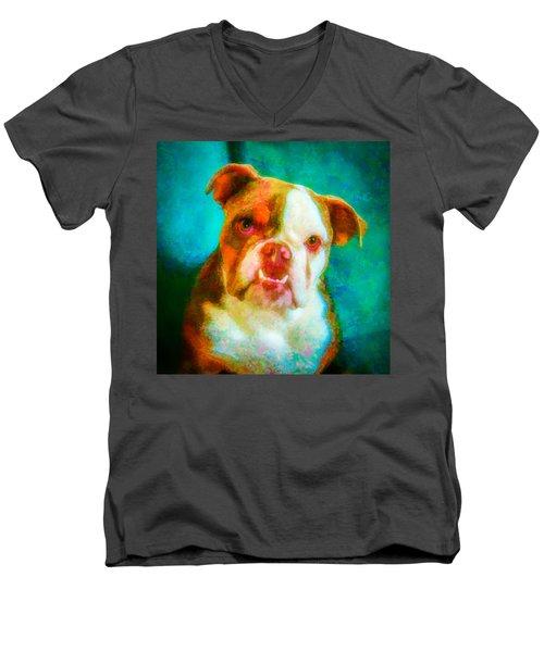 Bella 1 Men's V-Neck T-Shirt