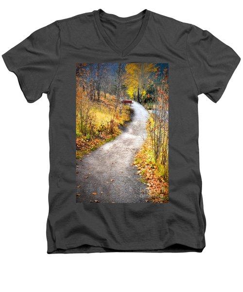 Bench On A Hill Men's V-Neck T-Shirt