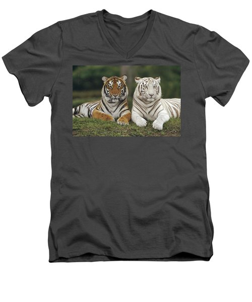 Bengal Tiger Team Men's V-Neck T-Shirt