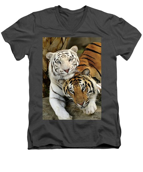 Bengal Tigers At Play Men's V-Neck T-Shirt