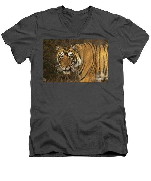 Bengale Tiger Men's V-Neck T-Shirt
