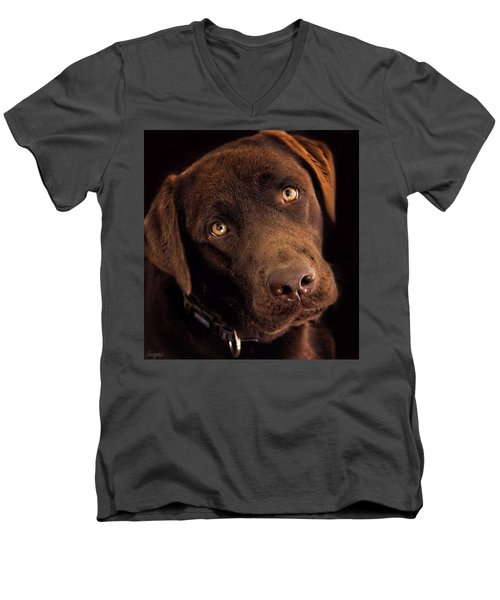 Men's V-Neck T-Shirt featuring the photograph Benji by Wallaroo Images