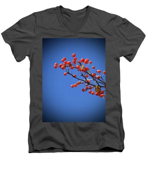 Berry Branch Men's V-Neck T-Shirt