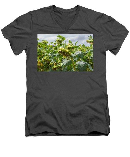 Beyond The Bloom Men's V-Neck T-Shirt