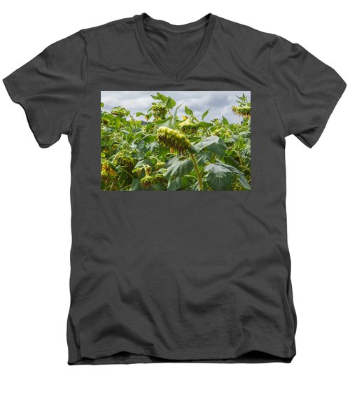 Beyond The Bloom Men's V-Neck T-Shirt