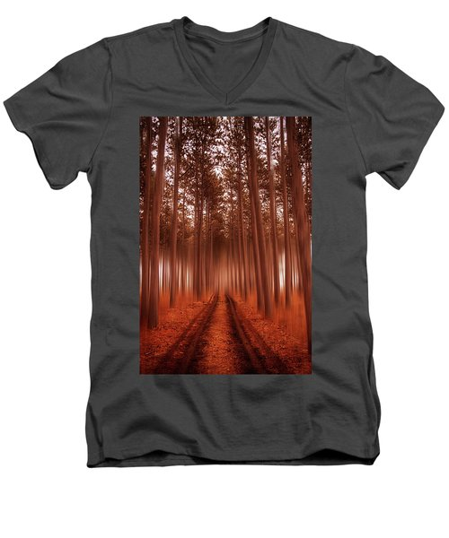 Beyond The Forest Men's V-Neck T-Shirt