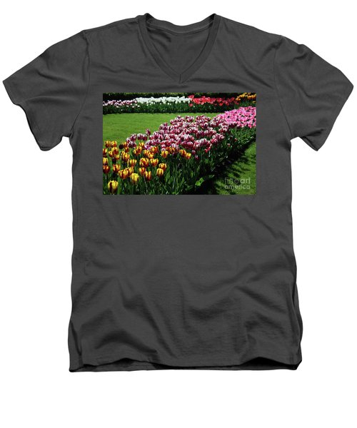 Multicolor Tulips Men's V-Neck T-Shirt by Ana Mireles