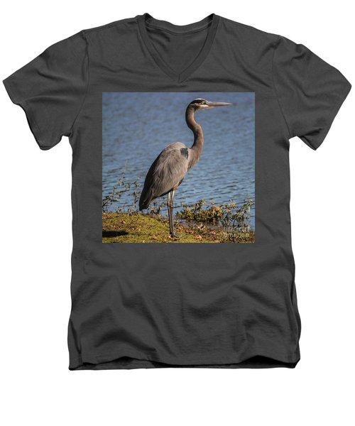 Big Bird Men's V-Neck T-Shirt