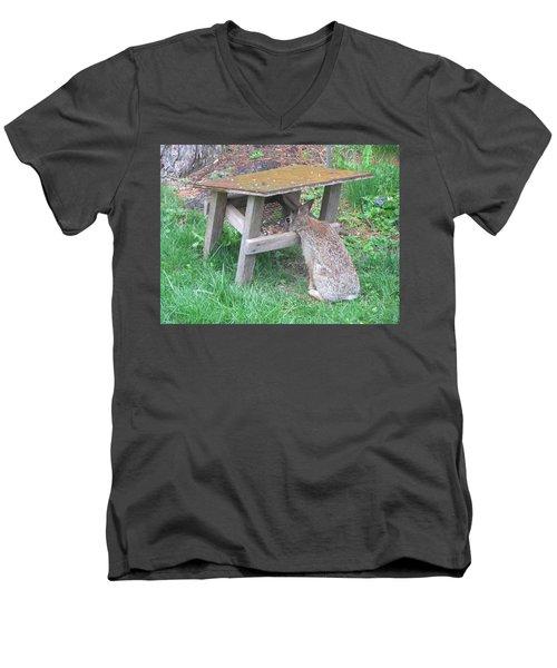 Big Eyed Rabbit Eating Birdseed Men's V-Neck T-Shirt by Betty Pieper