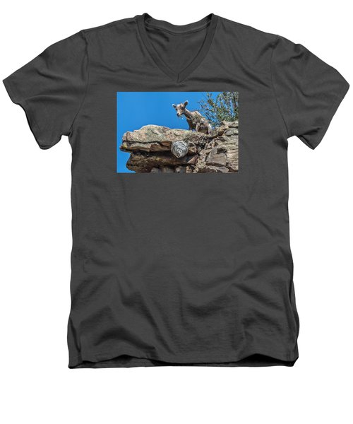 Men's V-Neck T-Shirt featuring the photograph Big Horn Lamb Overlooking Hornets Nest by Stephen  Johnson