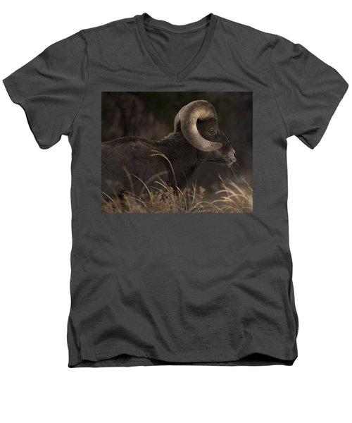 Big Horn Sheep Men's V-Neck T-Shirt