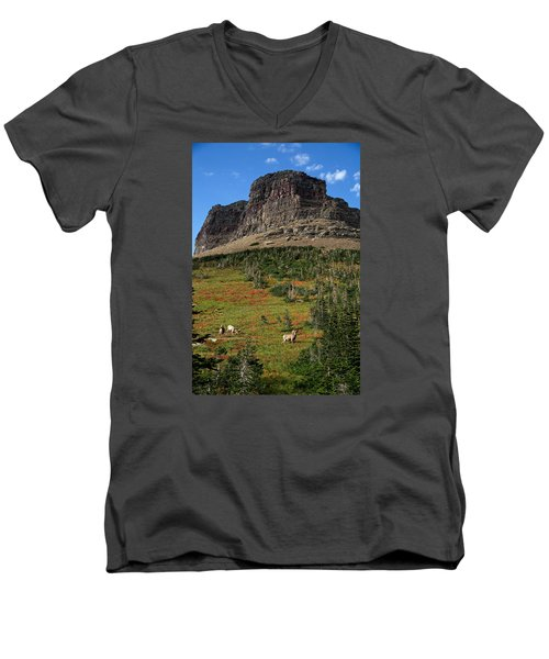 Big Horn Sheep Men's V-Neck T-Shirt by Lawrence Boothby